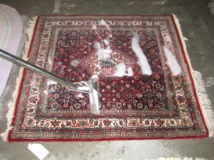 Rug Cleaners North Shore