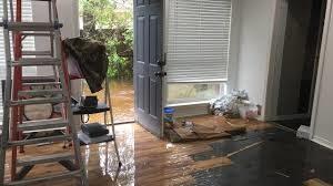 Flood Restoration North shore
