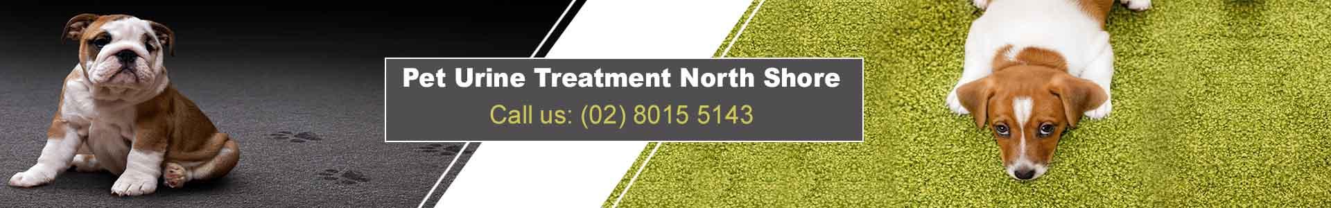 Pet Urine Treatment North Shore